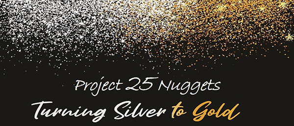 TTSH CF_How Can You Help_Project 25 Silver Nuggets.jpg